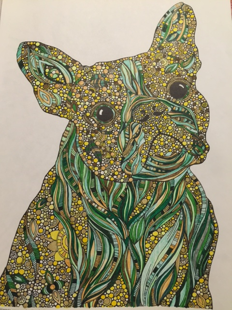 Boston Terrier, marker and colored pencil Photo: IDOPT